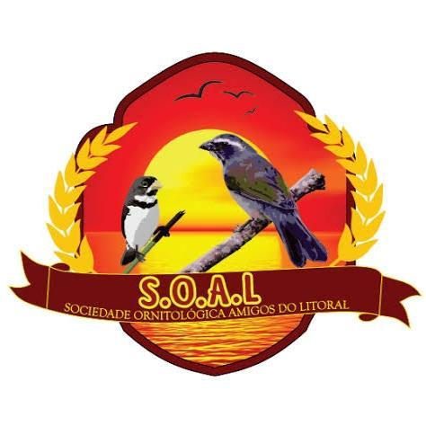 SOAL- SC