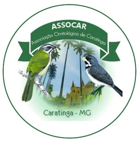 ASSOCAR - MG