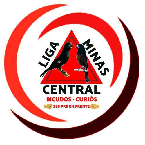 Liga Minas Central