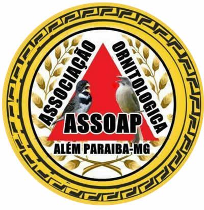 ASSOAP - 4 Feira