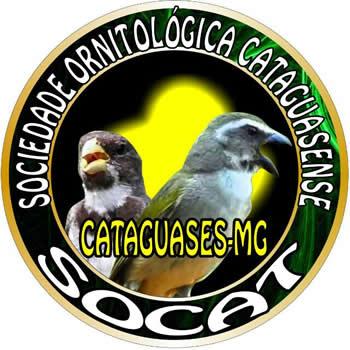 SOCAT - MG